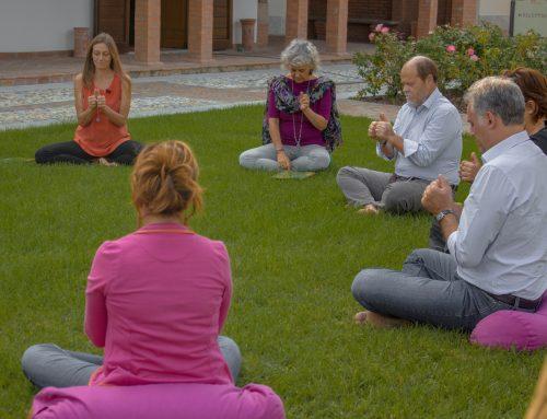 Hata o Kundalini. Di che yoga sei?